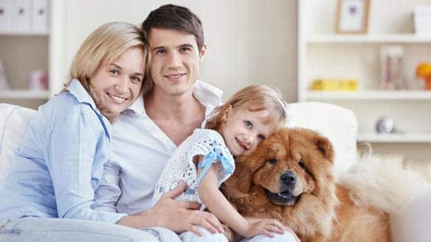 Wills & Trusts dog-young-family Direct Wills Cranleigh